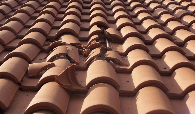 Który dach jest najlepszy przy zmianie klimatu?